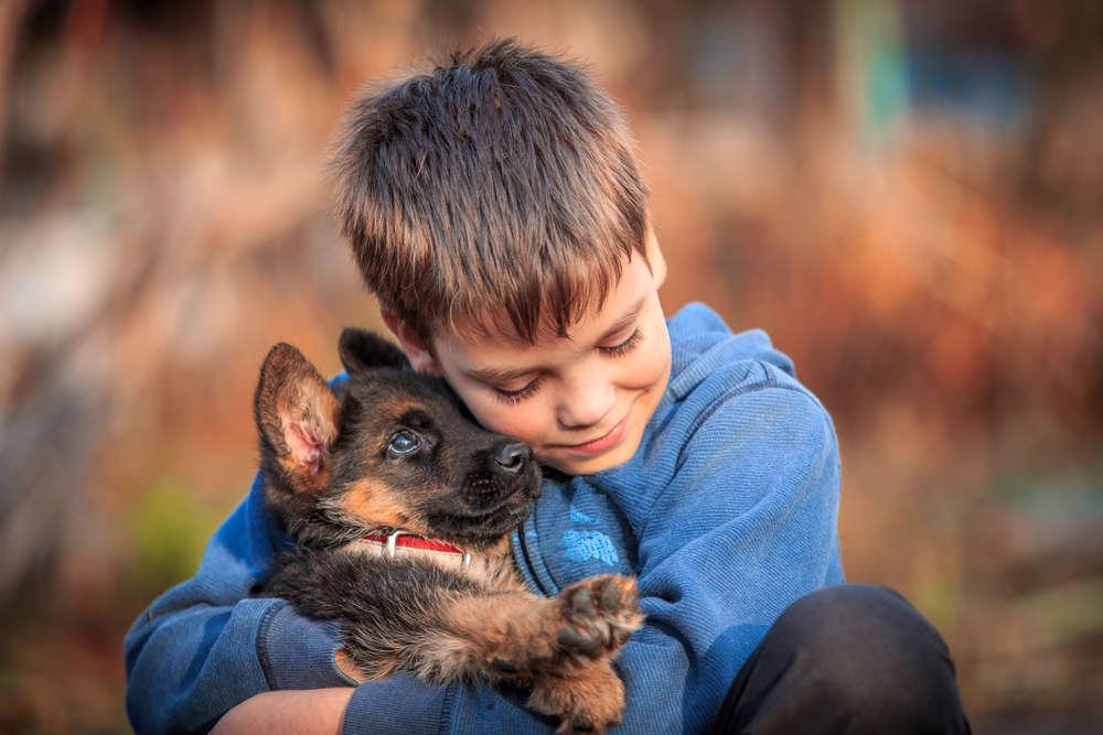Cómo puede un perro cambiar la vida de un niño