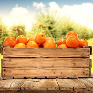 Verdades y leyendas de la Vitamina C