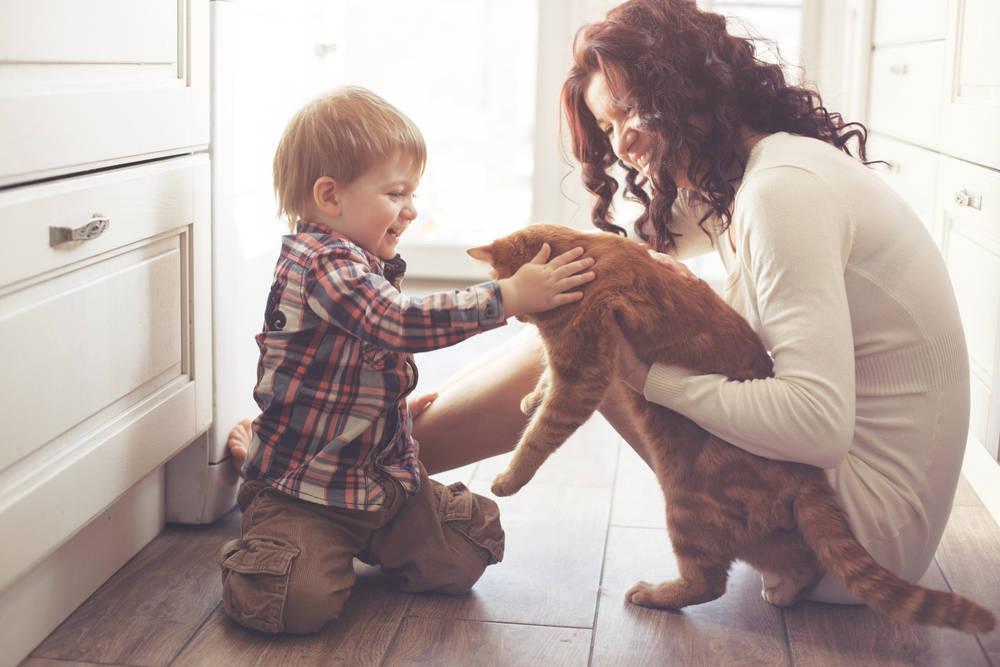 Cómo puede influir en nuestra salud tener una mascota en casa