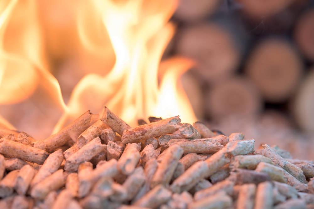 Las familias modernas prefieren la biomasa